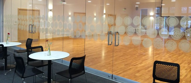 Glass Manifestation Comply With Dda Building Regulations