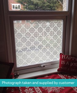 FB009 Frosted Window Film