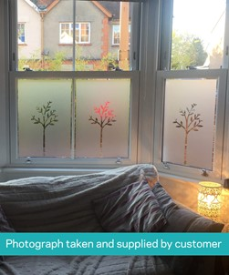 FB120 Frosted Window Film