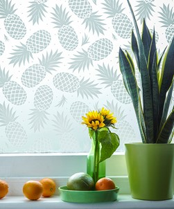 Fruta Pineapples Window Film Design